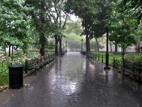 wetpark4