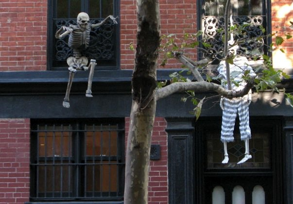 Skeletons Hanging in Window on Bleecker Street