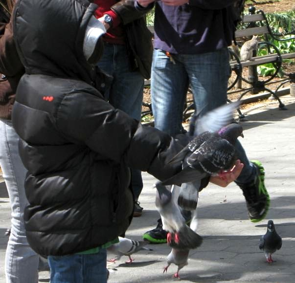 Feeding Pigeons in Washington Square Park