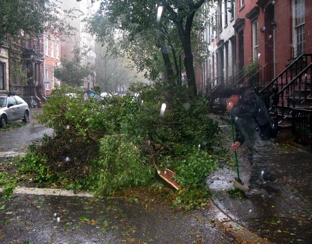 Hurricane Sandy Clean Up