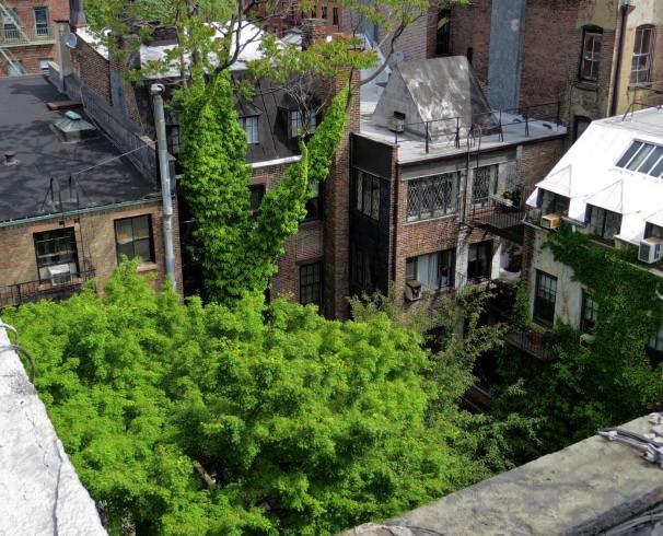 Courtyard, New York City