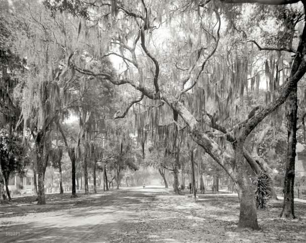 Daytonna Beach, FL, 1910