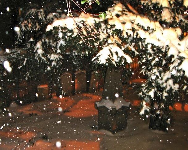 Snow10