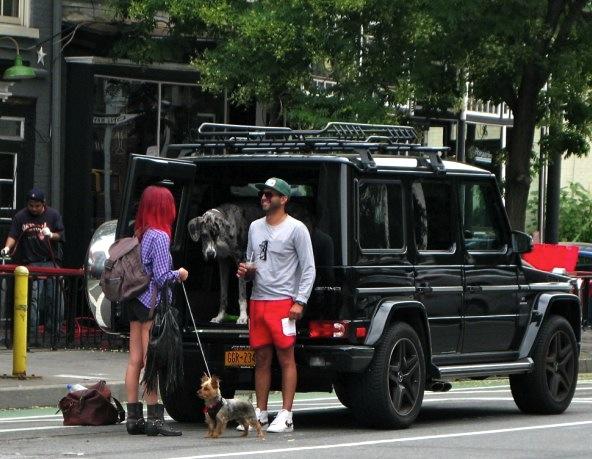 Dogs on Hudson Street, New York City