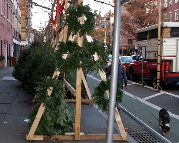 Christmas Tree Stand, New York City