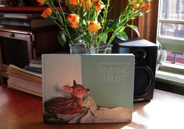 Finding Trust by Annie Marie Musselman