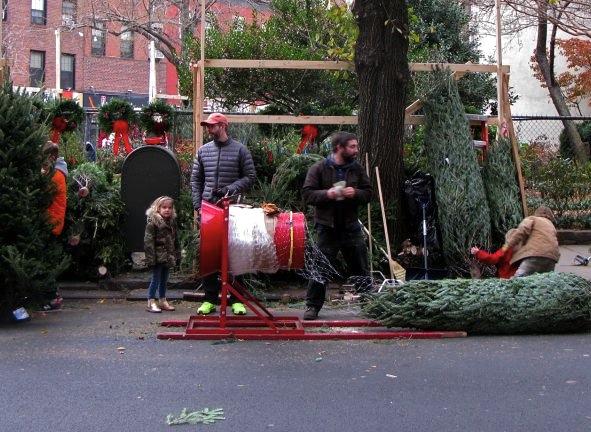 Christmas Tree Sales, New York City