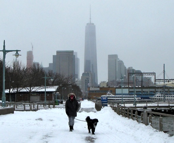 One World Trade Center and Dog in the Snow, New York City