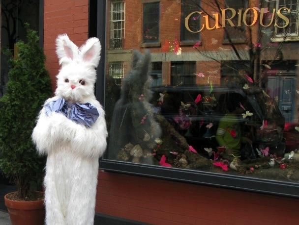 Bunny, Cynthia Rowley Curious