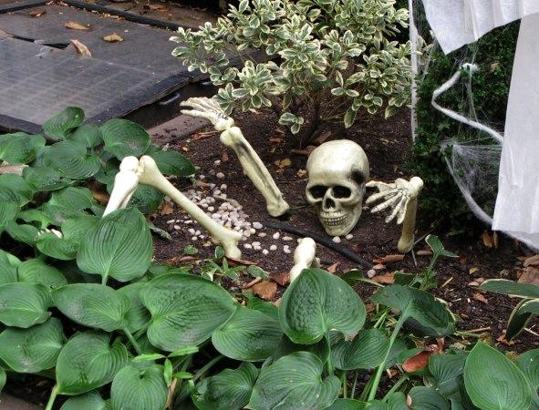 Halloween, West Village, New York City 2015