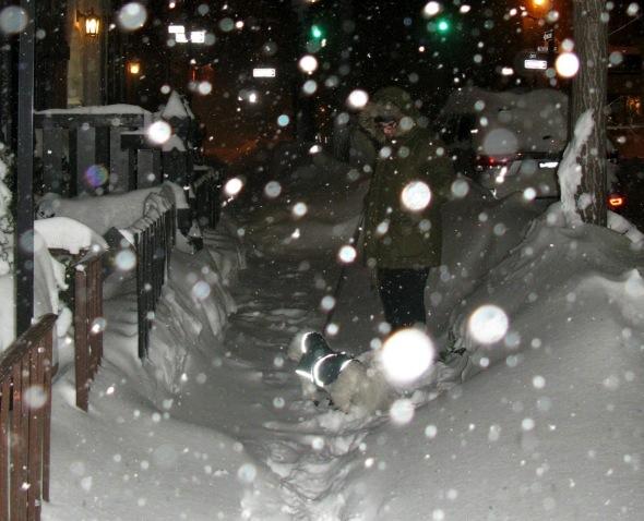Blizzard New York City, 2016