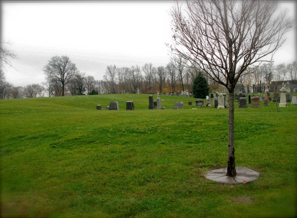 St. Michael's Cemetery, Astoria, New York
