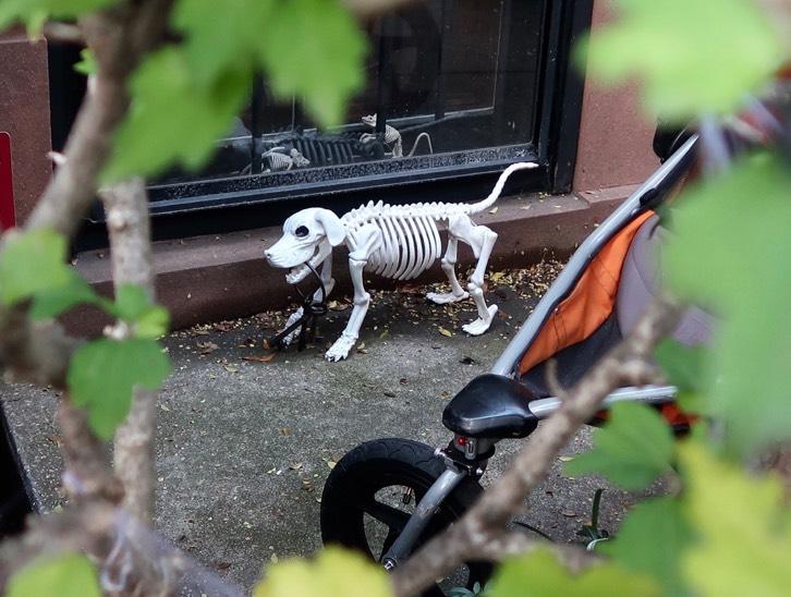 Halloween West Village, New York City, 2017