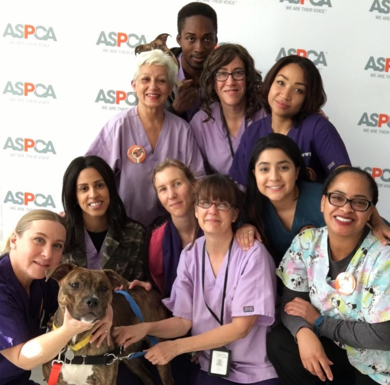 ASPCA Kitten Nursery Staff